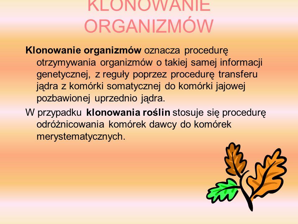 KLONOWANIE ORGANIZMÓW Klonowanie organizmów oznacza procedurę otrzymywania organizmów o takiej samej informacji genetycznej, z reguły poprzez procedurę transferu jądra z komórki somatycznej do komórki jajowej pozbawionej uprzednio jądra.