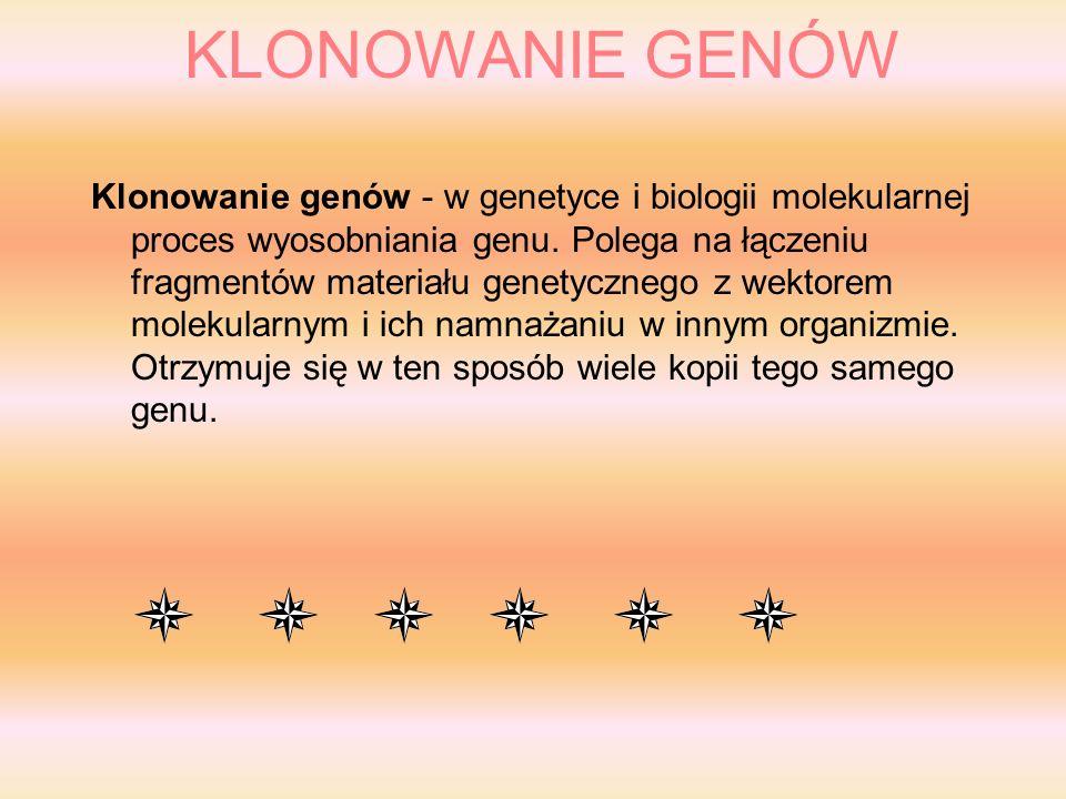 KLONOWANIE GENÓW Klonowanie genów - w genetyce i biologii molekularnej proces wyosobniania genu.