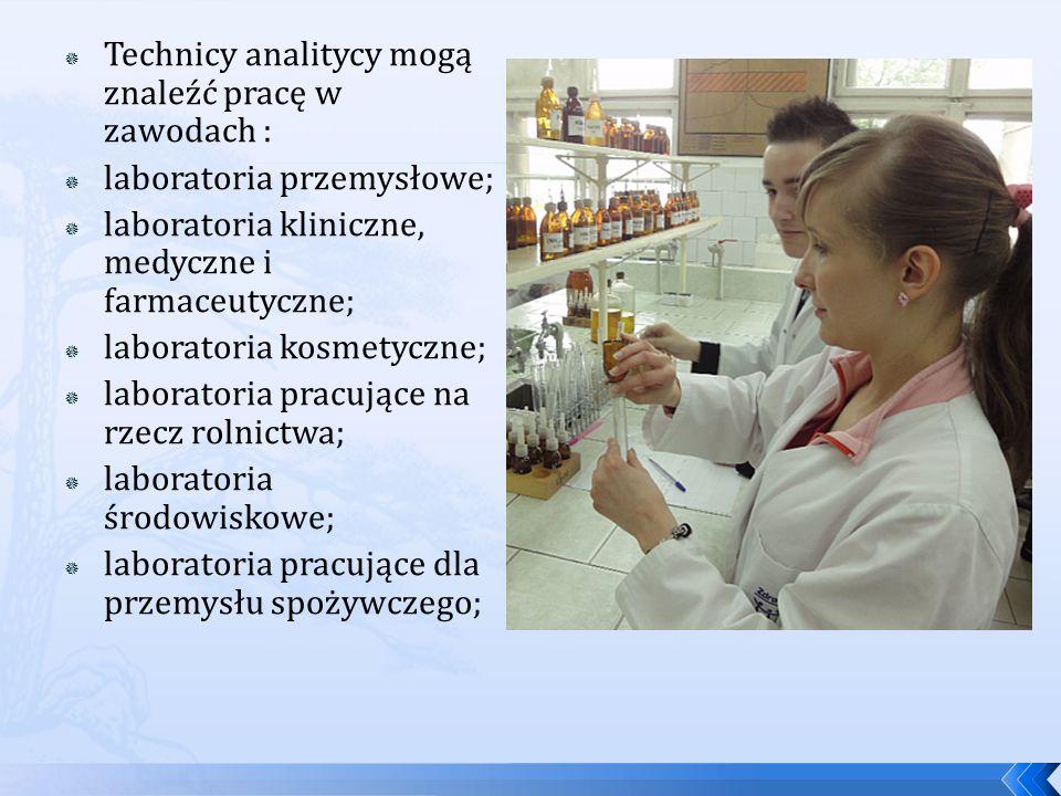 Technicy analitycy mogą znaleźć pracę w zawodach : laboratoria przemysłowe; laboratoria kliniczne, medyczne i farmaceutyczne; laboratoria kosmetyczne; laboratoria pracujące na rzecz rolnictwa; laboratoria środowiskowe; laboratoria pracujące dla przemysłu spożywczego;