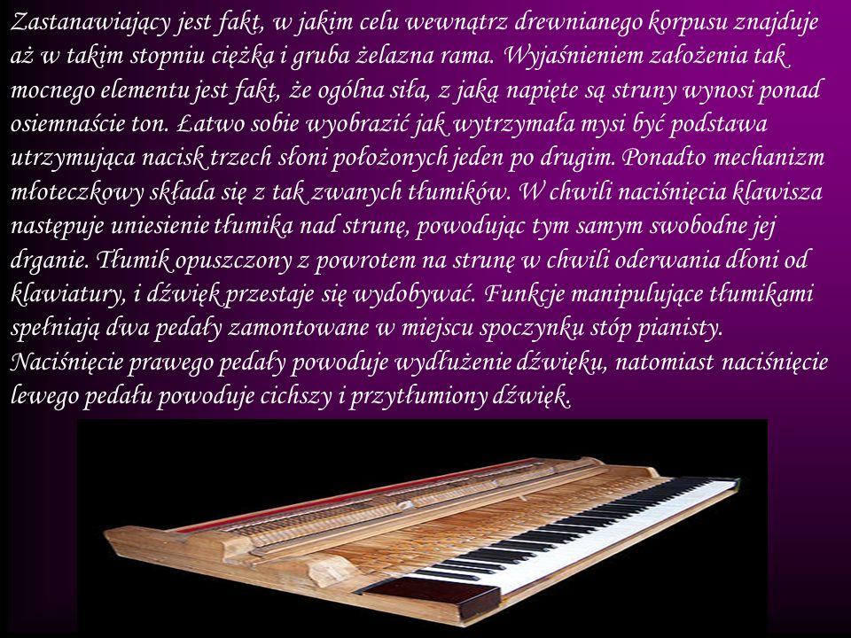 Zastanawiający jest fakt, w jakim celu wewnątrz drewnianego korpusu znajduje aż w takim stopniu ciężka i gruba żelazna rama. Wyjaśnieniem założenia ta