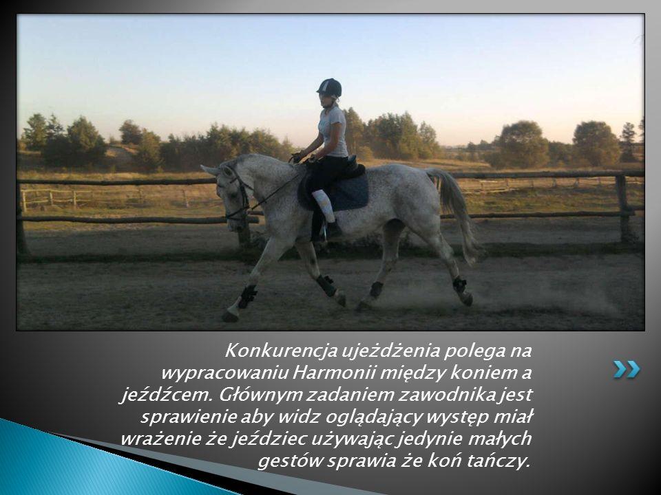 Sportem, o którym chciała bym opowiedzieć jest jazda konna. Charakteryzuje się ona niezwykłą więzią między zawodnikiem a jego zwierzęciem.
