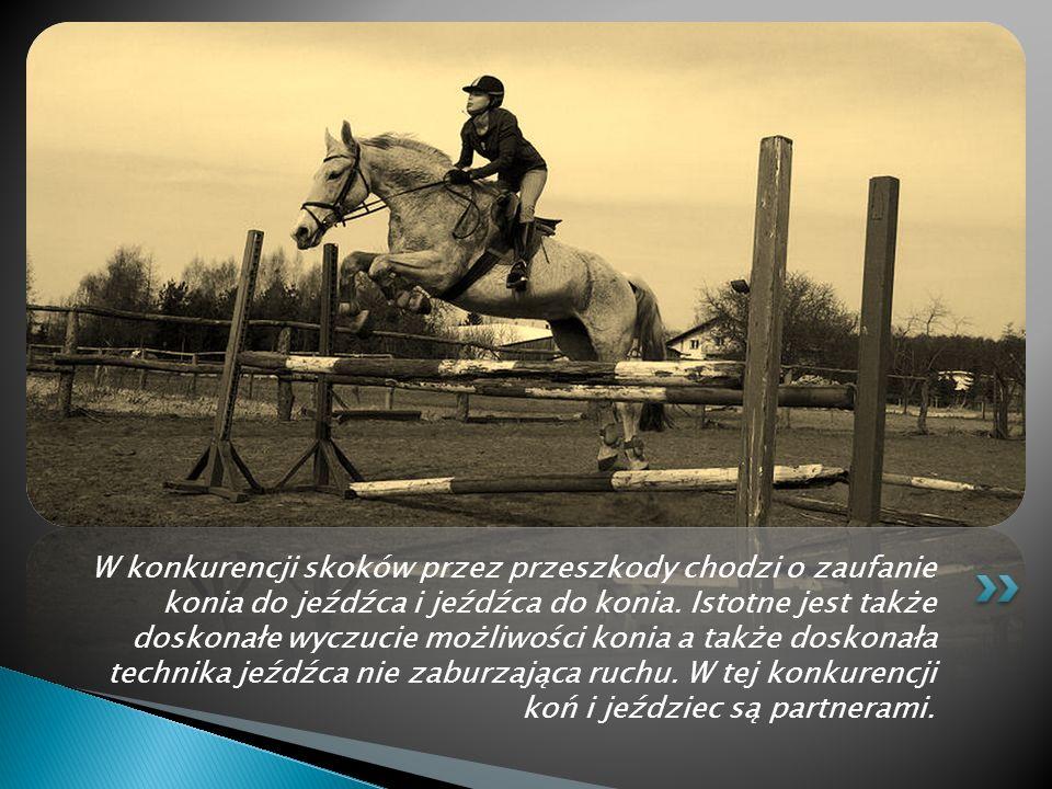Konkurencja ujeżdżenia polega na wypracowaniu Harmonii między koniem a jeźdźcem. Głównym zadaniem zawodnika jest sprawienie aby widz oglądający występ