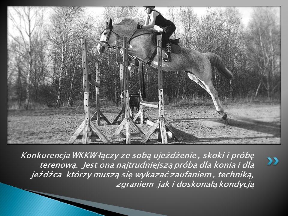 W konkurencji skoków przez przeszkody chodzi o zaufanie konia do jeźdźca i jeźdźca do konia. Istotne jest także doskonałe wyczucie możliwości konia a