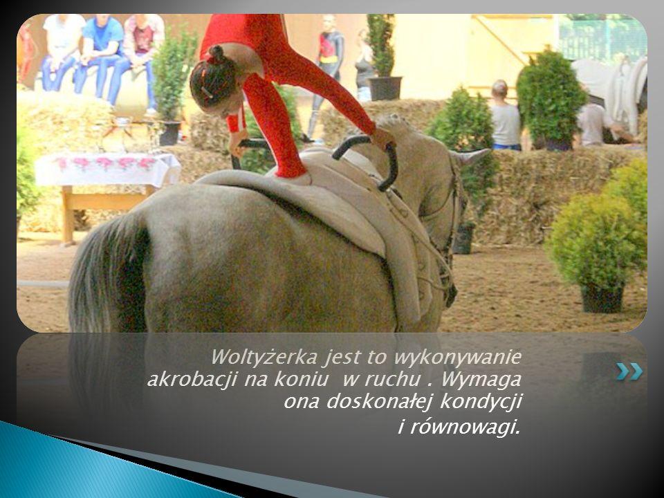 Konkurencja WKKW łączy ze sobą ujeżdżenie, skoki i próbę terenową. Jest ona najtrudniejszą próbą dla konia i dla jeźdźca którzy muszą się wykazać zauf