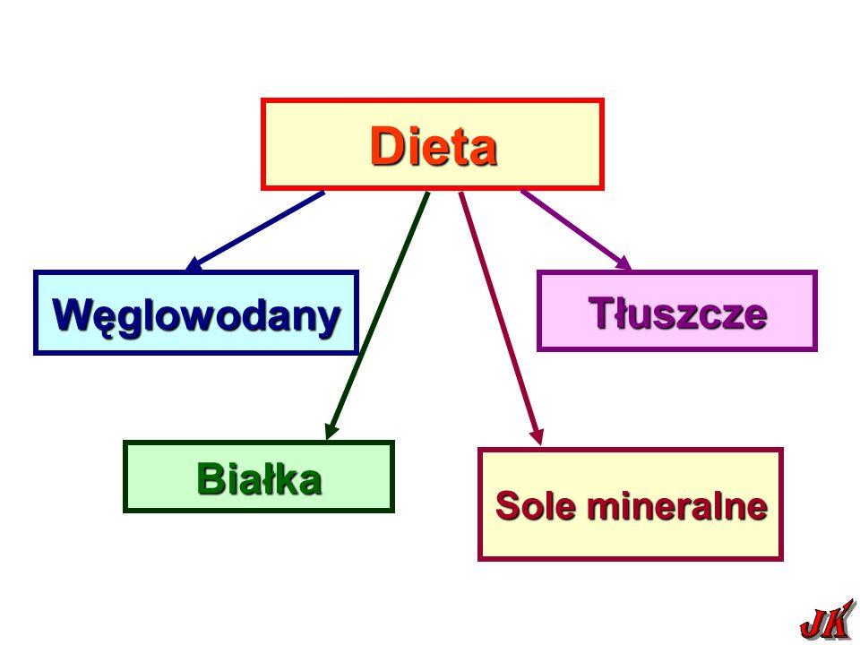 Dieta Węglowodany Białka Sole mineralne Tłuszcze