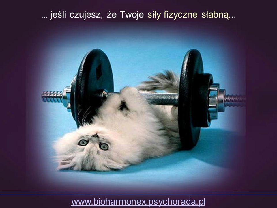 ... jeśli czujesz, że Twoje siły fizyczne słabną... www.bioharmonex.psychorada.pl