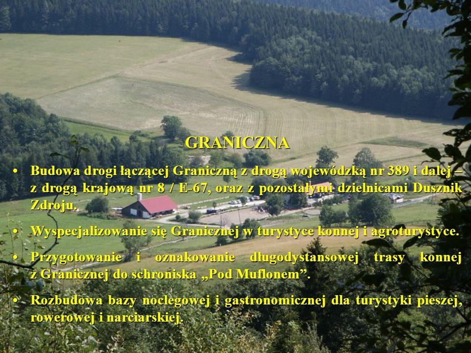 GRANICZNA Budowa drogi łączącej Graniczną z drogą wojewódzką nr 389 i dalej – z drogą krajową nr 8 / E-67, oraz z pozostałymi dzielnicami Dusznik Zdroju.Budowa drogi łączącej Graniczną z drogą wojewódzką nr 389 i dalej – z drogą krajową nr 8 / E-67, oraz z pozostałymi dzielnicami Dusznik Zdroju.