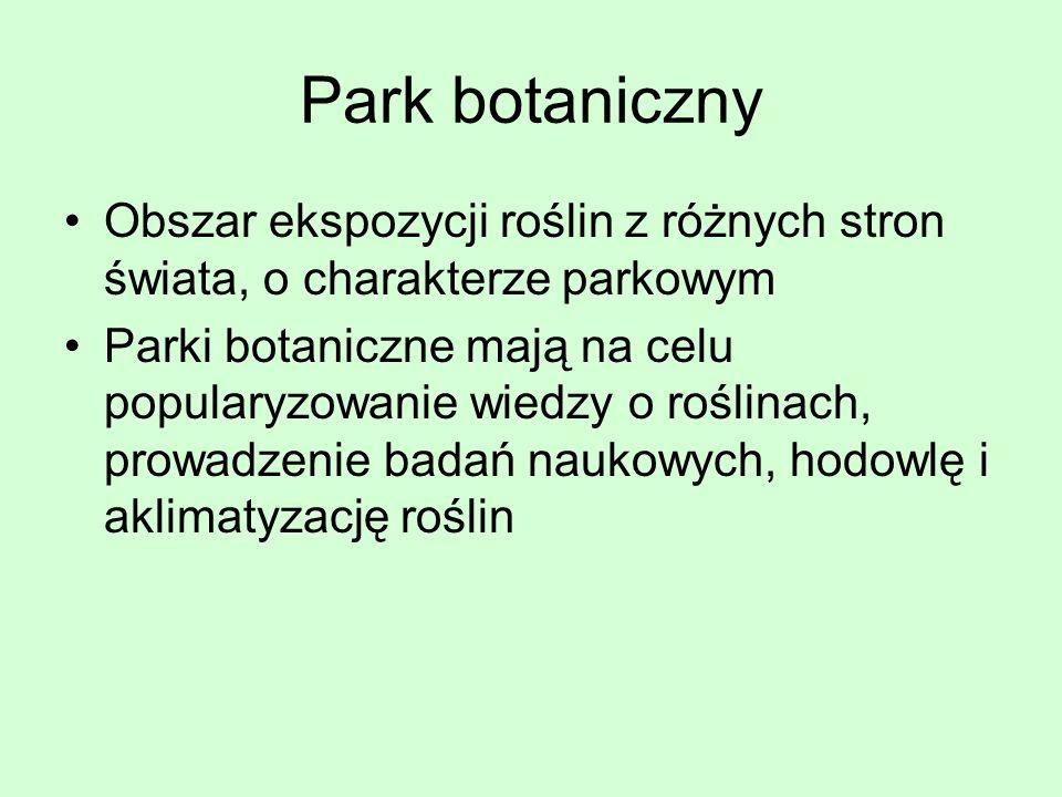 Park botaniczny Obszar ekspozycji roślin z różnych stron świata, o charakterze parkowym Parki botaniczne mają na celu popularyzowanie wiedzy o roślina