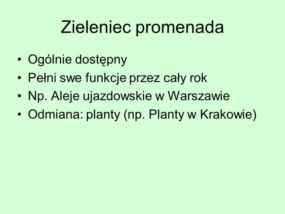 Zieleniec promenada Ogólnie dostępny Pełni swe funkcje przez cały rok Np. Aleje ujazdowskie w Warszawie Odmiana: planty (np. Planty w Krakowie)