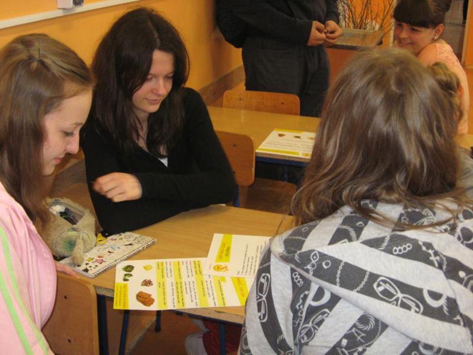 Podjęte działania: Wykonanie plakatów i zdjęć Wykonanie plakatów i zdjęć Przeprowadzenie lekcji Przeprowadzenie lekcji
