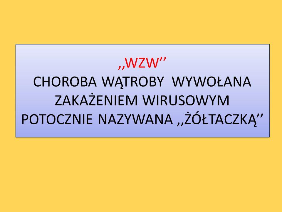 CHOROBY ZAKAŹNE WIRUSOWE ZAPALENIE WATROBY mgr Roman Giełczyński