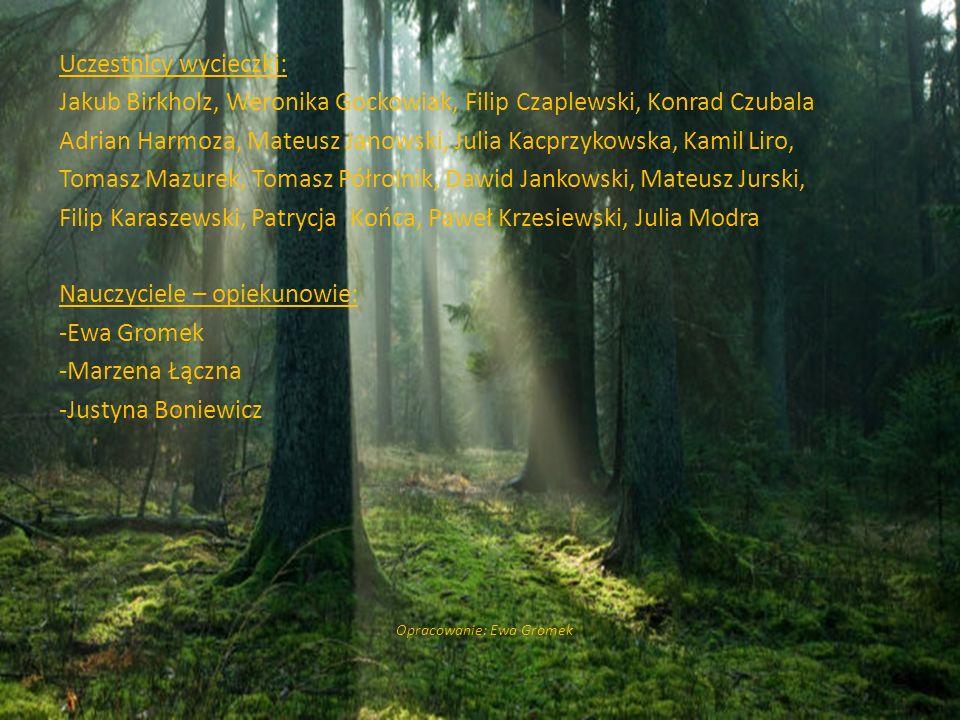 Uczestnicy wycieczki: Jakub Birkholz, Weronika Gockowiak, Filip Czaplewski, Konrad Czubala Adrian Harmoza, Mateusz Janowski, Julia Kacprzykowska, Kami