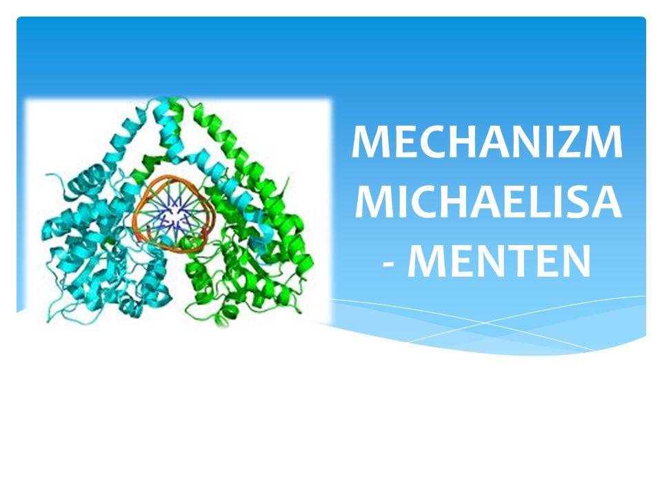 Jak łatwo zauważyć z wyprowadzonego równania: Stała Michaelisa to takie stężenie substratu przy którym szybkość jest równa połowie szybkości maksymalnej.