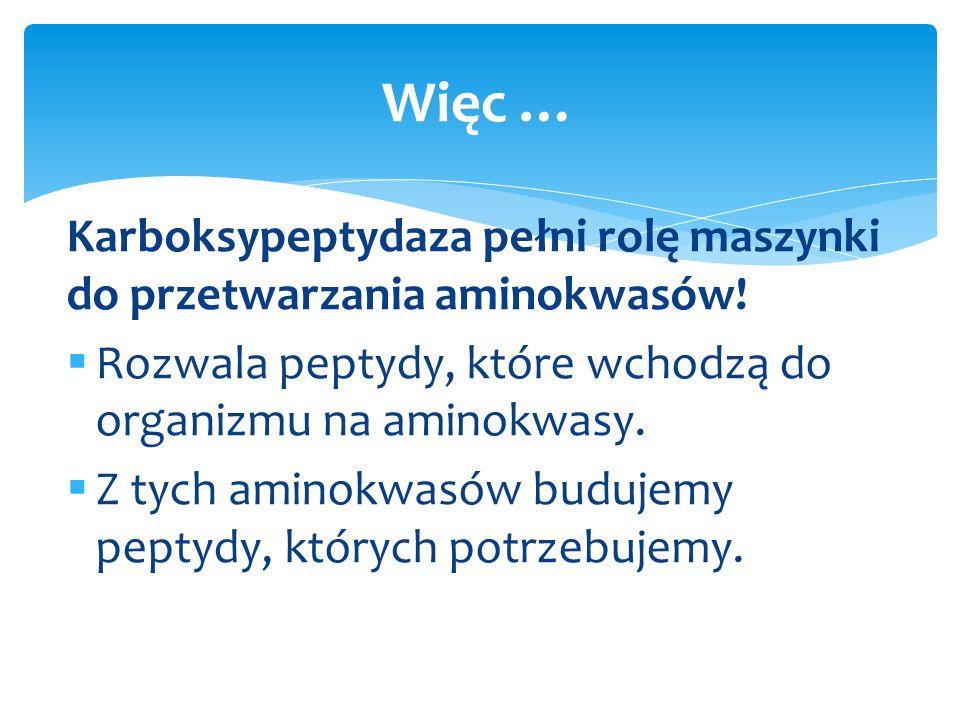 http://www.chemistry.wustl.edu/~edudev/LabTutorials/ Carboxypeptidase/carboxypeptidase.html Ogólne działanie