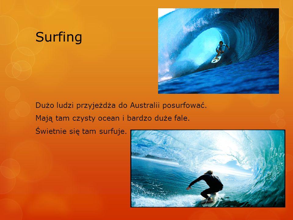 Surfing Dużo ludzi przyjeżdża do Australii posurfować. Mają tam czysty ocean i bardzo duże fale. Świetnie się tam surfuje.