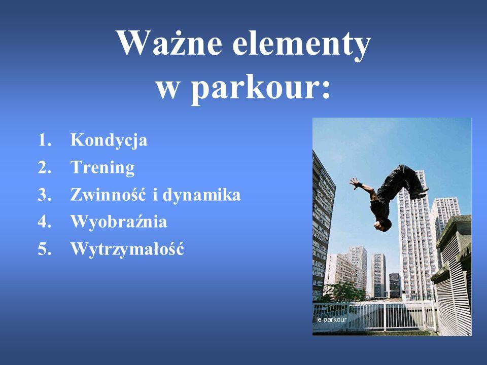 Ważne elementy w parkour: 1.Kondycja 2.Trening 3.Zwinność i dynamika 4.Wyobraźnia 5.Wytrzymałość