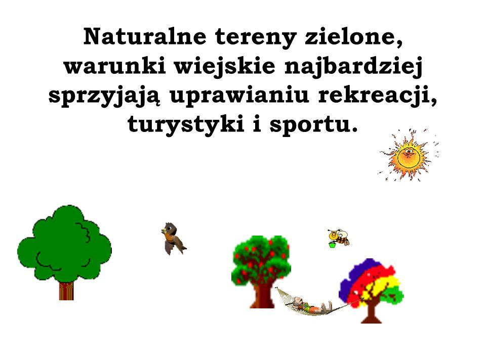 Naturalne tereny zielone, warunki wiejskie najbardziej sprzyjają uprawianiu rekreacji, turystyki i sportu.