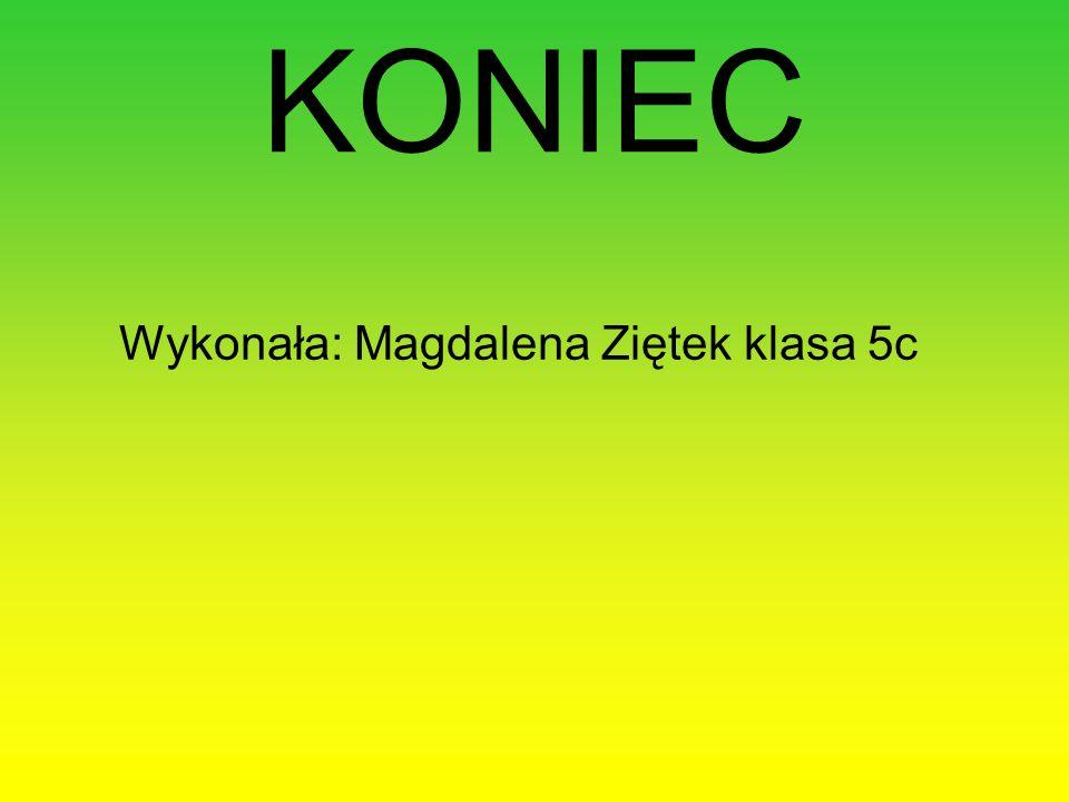 KONIEC Wykonała: Magdalena Ziętek klasa 5c