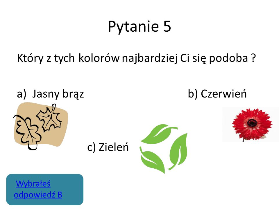 Pytanie 5 Który z tych kolorów najbardziej Ci się podoba ? a)Jasny brąz b) Czerwień c) Zieleń Wybrałeś odpowiedź BWybrałeś odpowiedź B