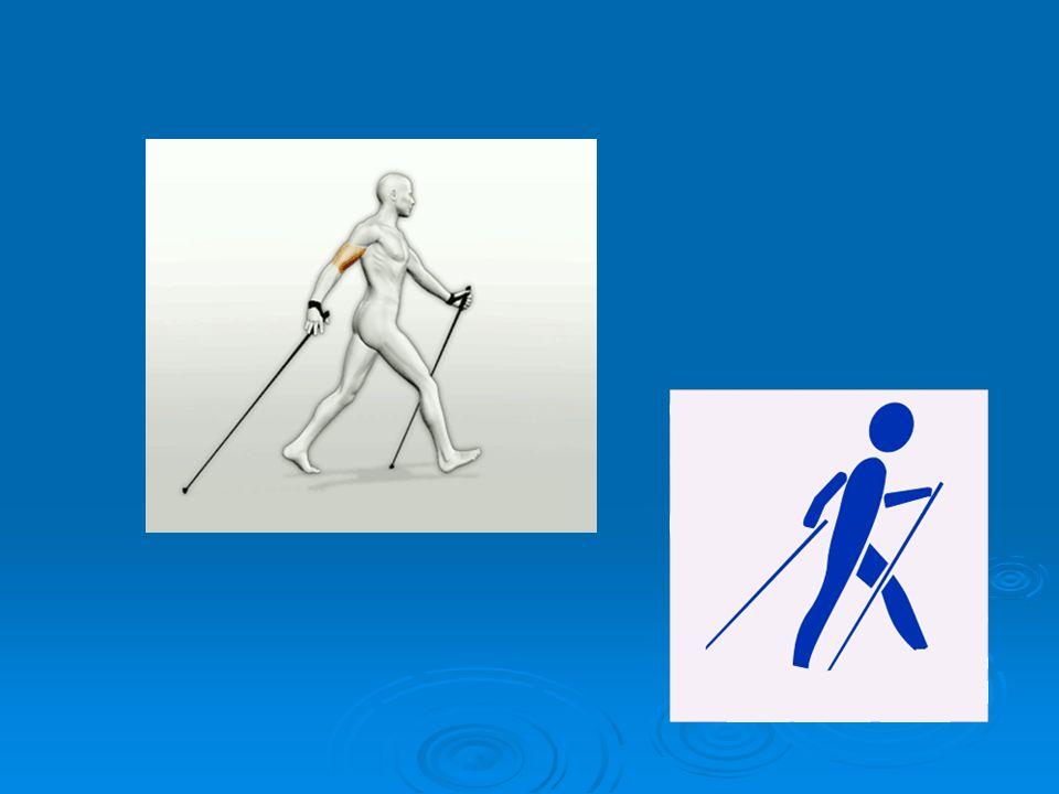 Ten sport może uprawiać każdy bez względu na wiek, kondycję czy tuszę. Może być uprawiany nad morzem, w górach, parku czy lesie, przez cały rok. Dobrz
