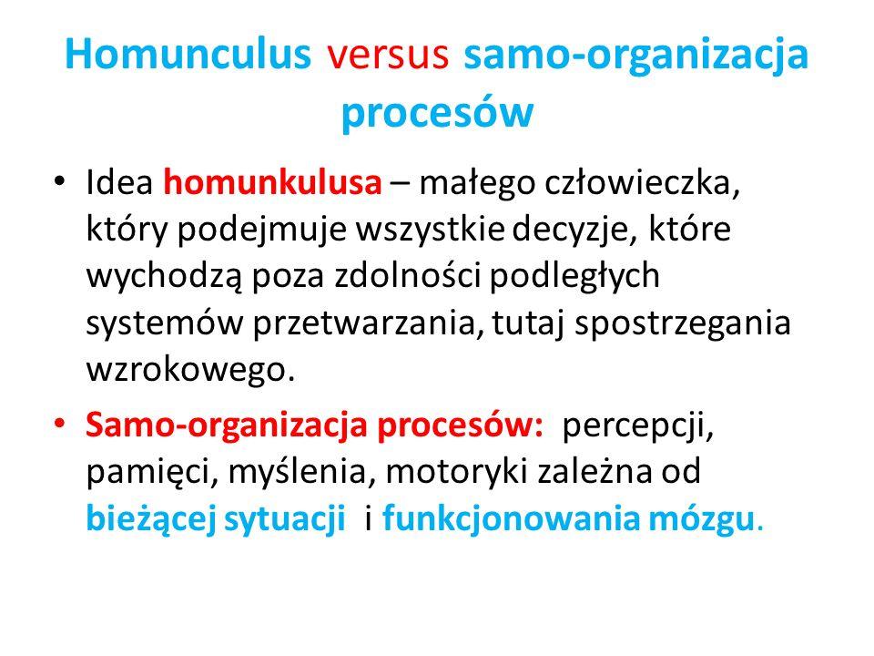 Homunculus versus samo-organizacja procesów Idea homunkulusa – małego człowieczka, który podejmuje wszystkie decyzje, które wychodzą poza zdolności po