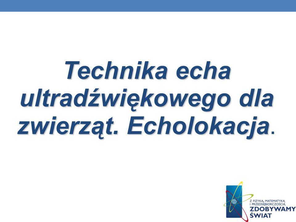 Technika echa ultradźwiękowego dla zwierząt. Echolokacja Technika echa ultradźwiękowego dla zwierząt. Echolokacja.