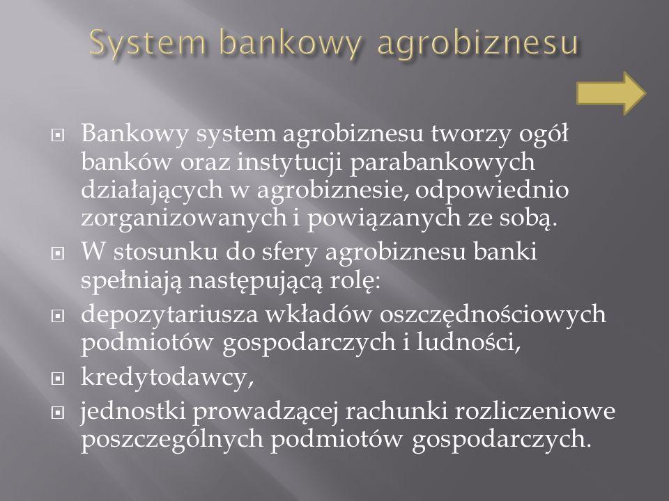 Bankowy system agrobiznesu tworzy ogół banków oraz instytucji parabankowych działających w agrobiznesie, odpowiednio zorganizowanych i powiązanych ze sobą.