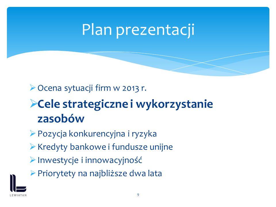 Ocena sytuacji firm w 2013 r. Cele strategiczne i wykorzystanie zasobów Pozycja konkurencyjna i ryzyka Kredyty bankowe i fundusze unijne Inwestycje i