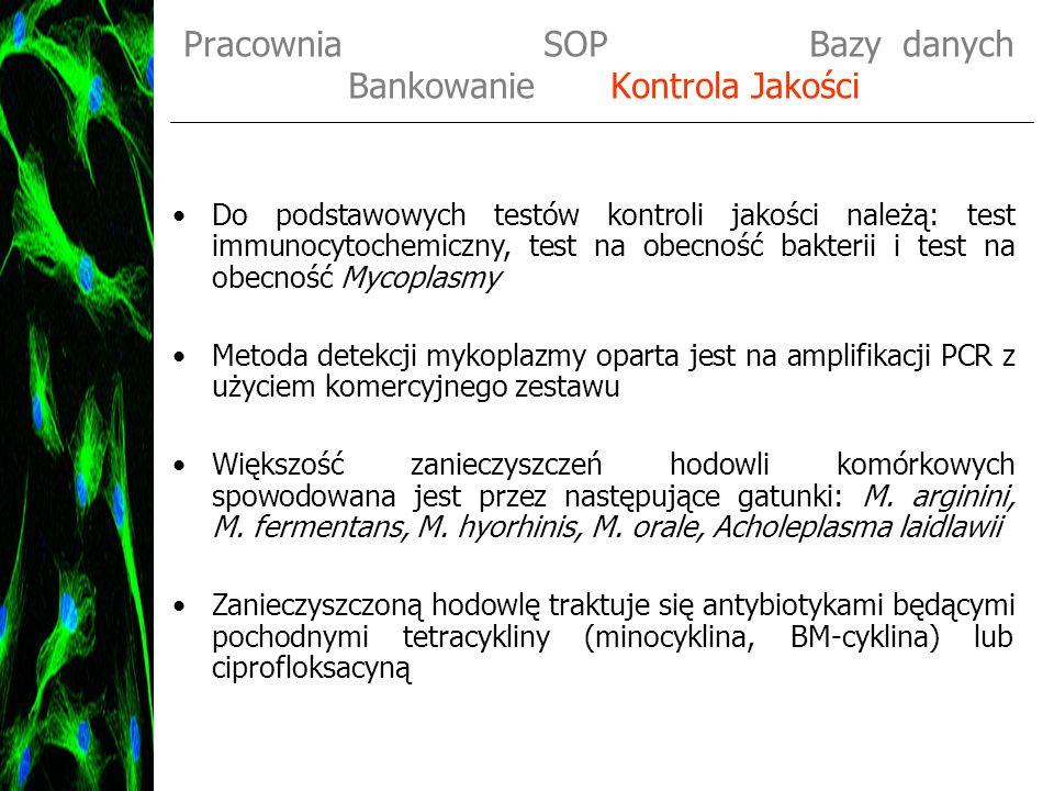 Pracownia SOP Bazy danych Bankowanie Kontrola Jakości Do podstawowych testów kontroli jakości należą: test immunocytochemiczny, test na obecność bakte