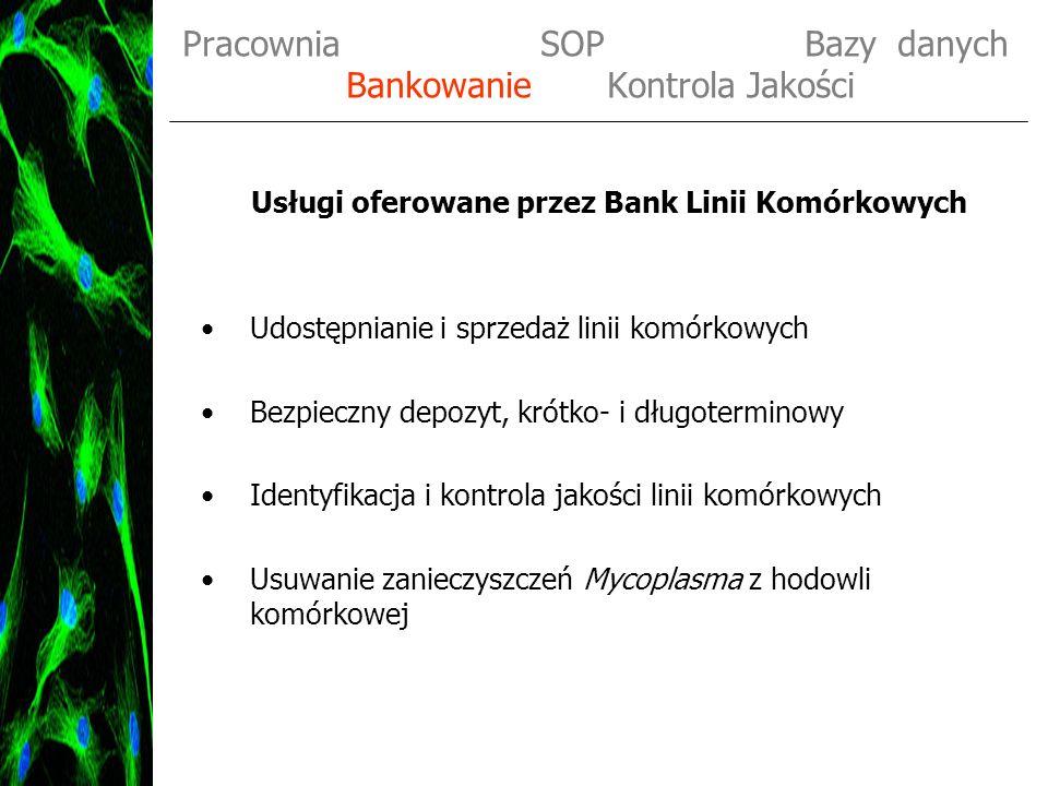 Pracownia SOP Bazy danych Bankowanie Kontrola Jakości Przechowywanie linii komórkowych oraz ich dystrybucja Original Bank (OB) do 5 krioampułek Master Bank (MB) 10 - 15 krioampułek Distribution Bank (DB) 15 - 30 krioampułek 10 6 komórek / ml