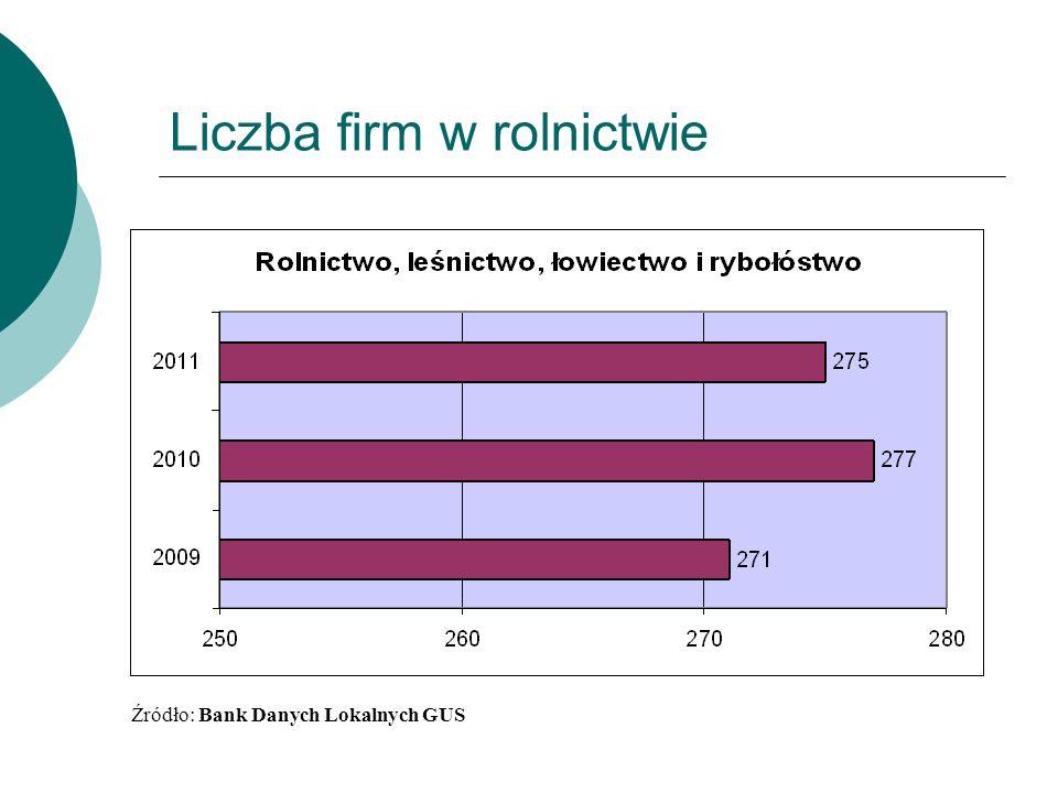 Liczba firm w rolnictwie Źródło: Bank Danych Lokalnych GUS