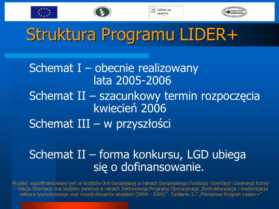 Struktura Programu LIDER+ Schemat I – obecnie realizowany lata 2005-2006 Schemat II – szacunkowy termin rozpoczęcia kwiecień 2006 Schemat III – w przy