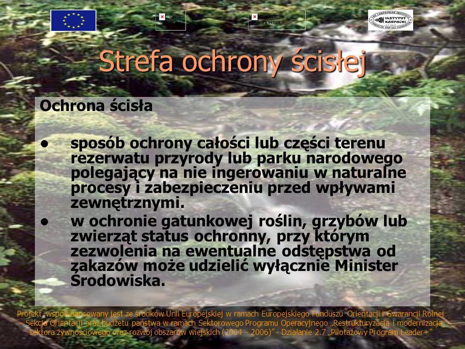 Strefa ochrony ścisłej Ochrona ścisła sposób ochrony całości lub części terenu rezerwatu przyrody lub parku narodowego polegający na nie ingerowaniu w