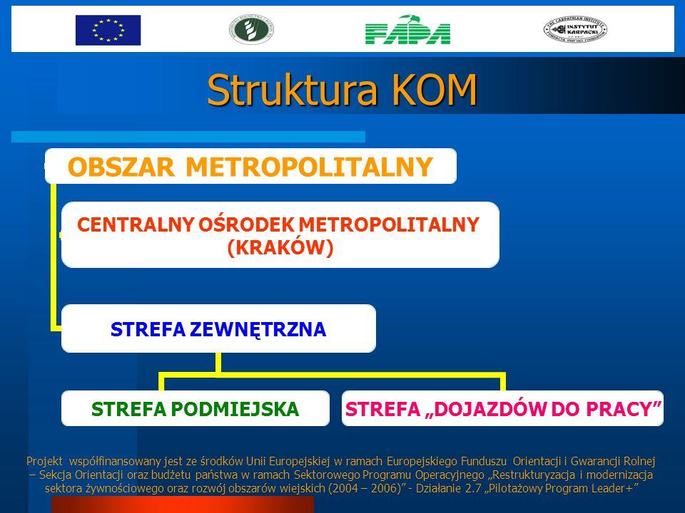 Struktura KOM OBSZAR METROPOLITALNY CENTRALNY OŚRODEK METROPOLITALNY (KRAKÓW) STREFA ZEWNĘTRZNA STREFA PODMIEJSKA STREFA DOJAZDÓW DO PRACY Projekt wsp