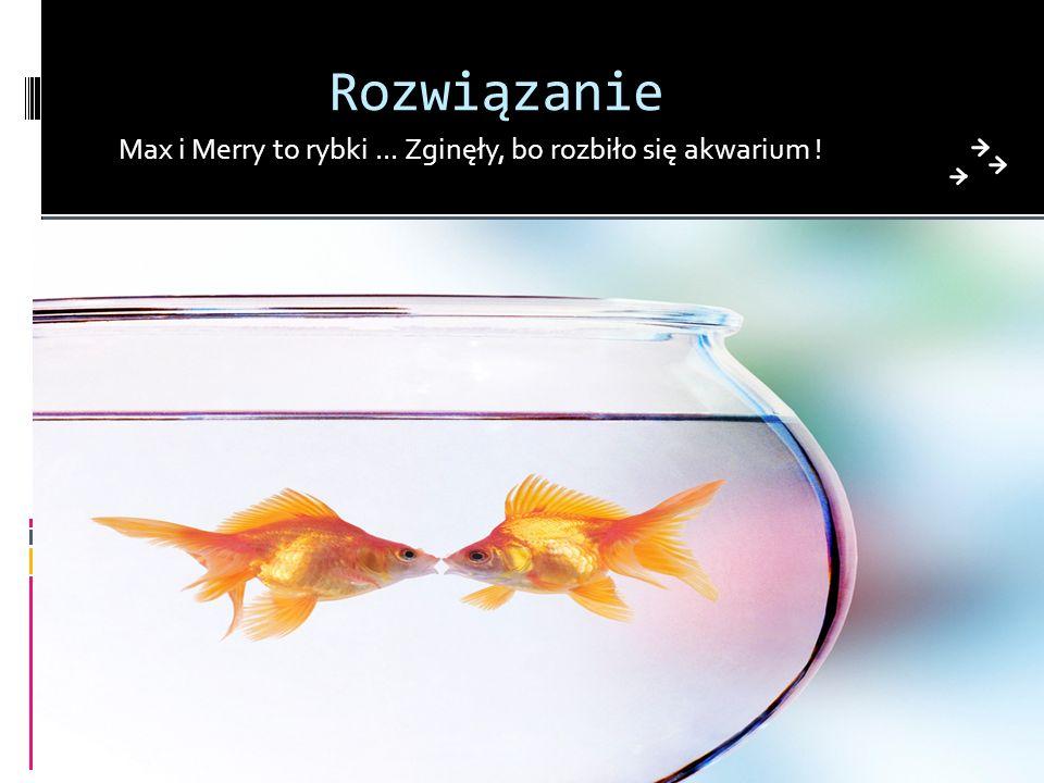 Rozwiązanie Max i Merry to rybki... Zginęły, bo rozbiło się akwarium !