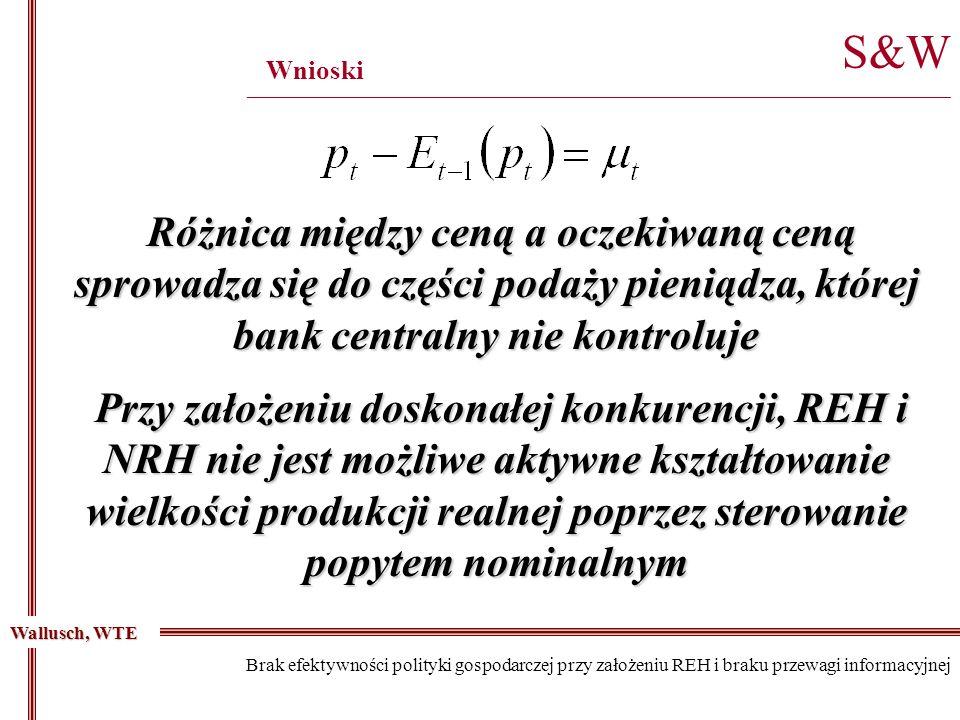 S&W ________________________________________________________________________________________ Wnioski Wallusch, WTE Brak efektywności polityki gospodar