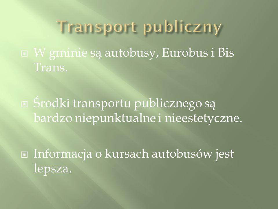 W gminie są autobusy, Eurobus i Bis Trans.