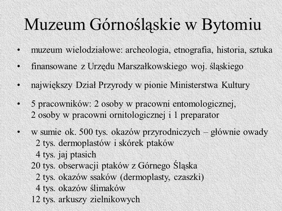 Muzeum Górnośląskie w Bytomiu muzeum wielodziałowe: archeologia, etnografia, historia, sztuka finansowane z Urzędu Marszałkowskiego woj.