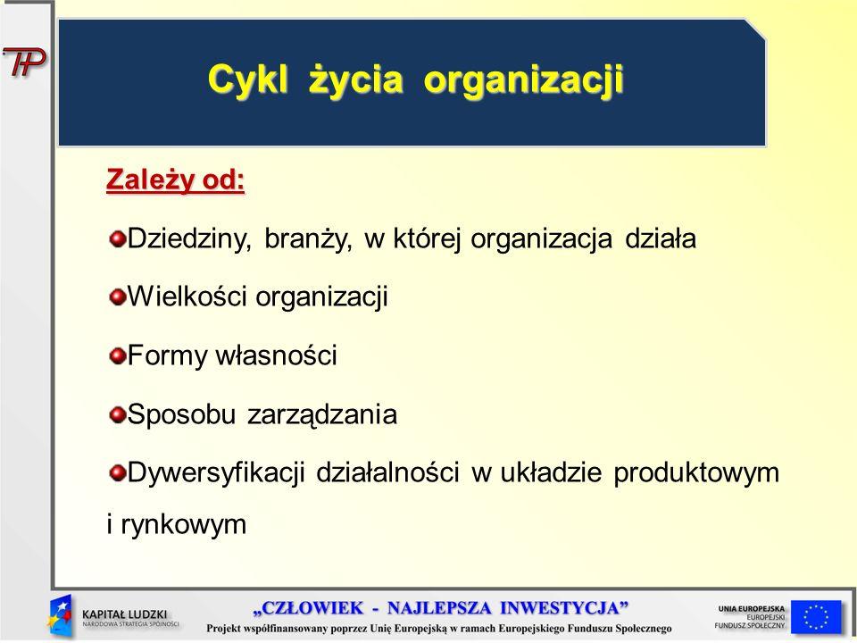 Zależy od: Dziedziny, branży, w której organizacja działa Wielkości organizacji Formy własności Sposobu zarządzania Dywersyfikacji działalności w ukła