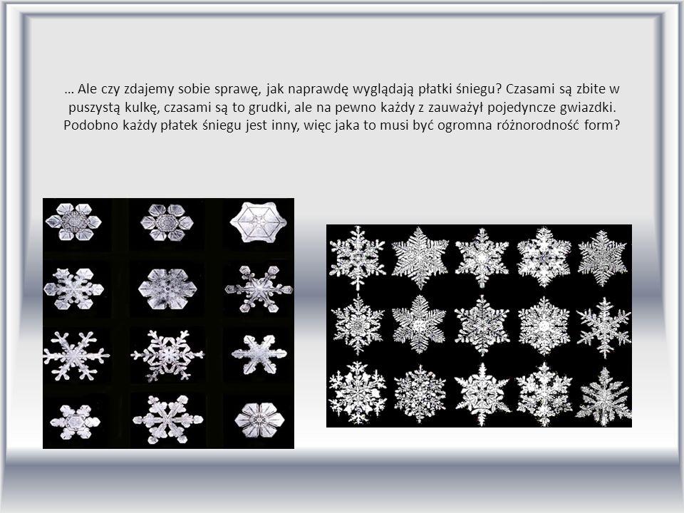 … Ale czy zdajemy sobie sprawę, jak naprawdę wyglądają płatki śniegu? Czasami są zbite w puszystą kulkę, czasami są to grudki, ale na pewno każdy z za