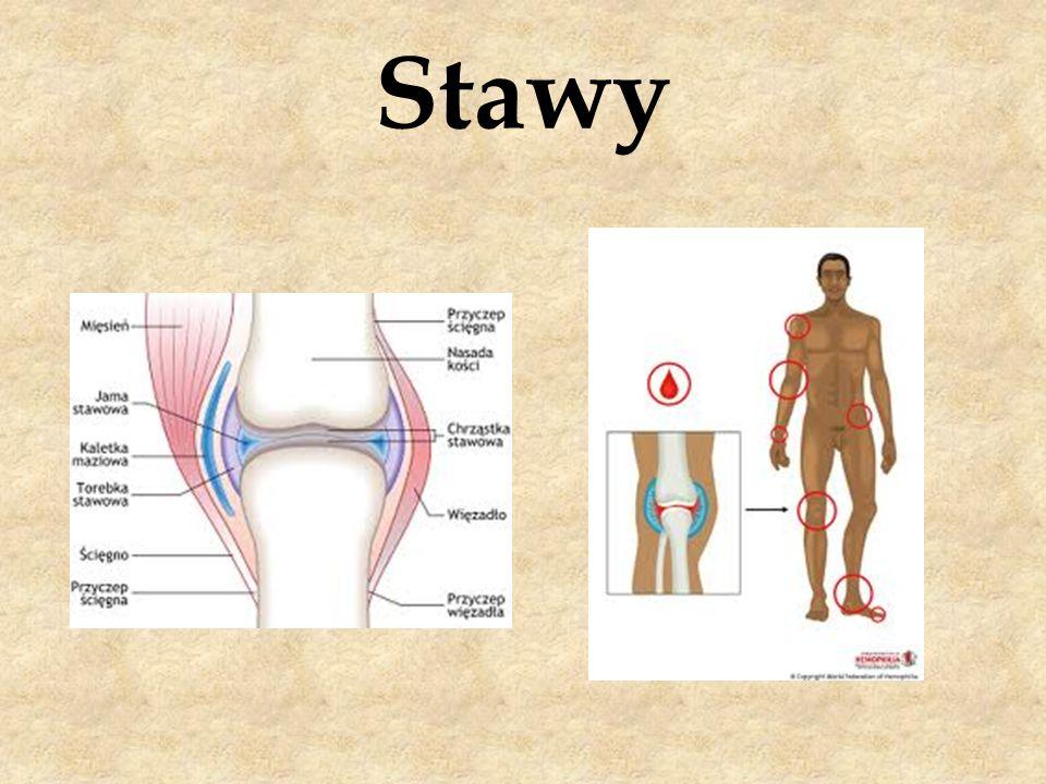 Stawy