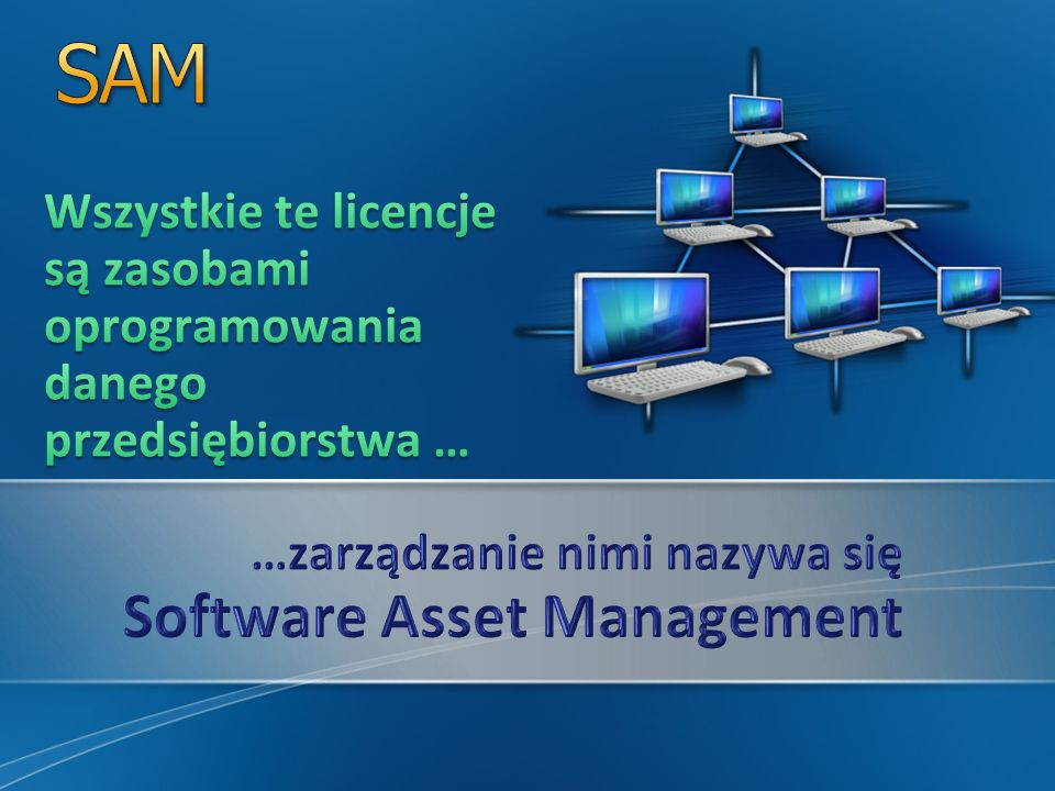 ITIL v3 Guide to Software Asset Management Office of Government Commerce, 2009 Rozdział 1.2