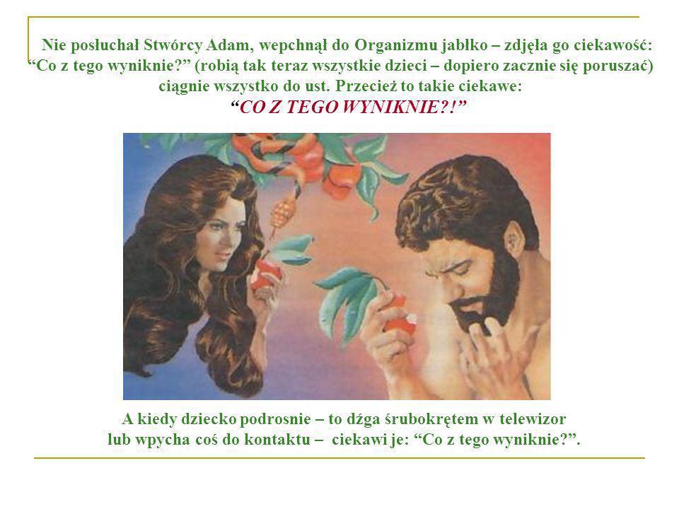 Nie posłuchał Stwórcy Adam, wepchnął do Organizmu jabłko – zdjęła go ciekawość: Co z tego wyniknie? (robią tak teraz wszystkie dzieci – dopiero zaczni