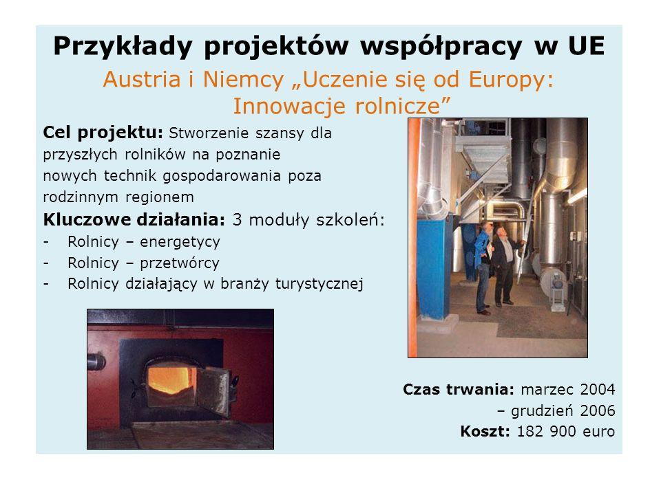 Przykłady projektów współpracy w UE Austria i Niemcy Uczenie się od Europy: Innowacje rolnicze Cel projektu: Stworzenie szansy dla przyszłych rolników na poznanie nowych technik gospodarowania poza rodzinnym regionem Kluczowe działania: 3 moduły szkoleń: -Rolnicy – energetycy -Rolnicy – przetwórcy -Rolnicy działający w branży turystycznej Czas trwania: marzec 2004 – grudzień 2006 Koszt: 182 900 euro