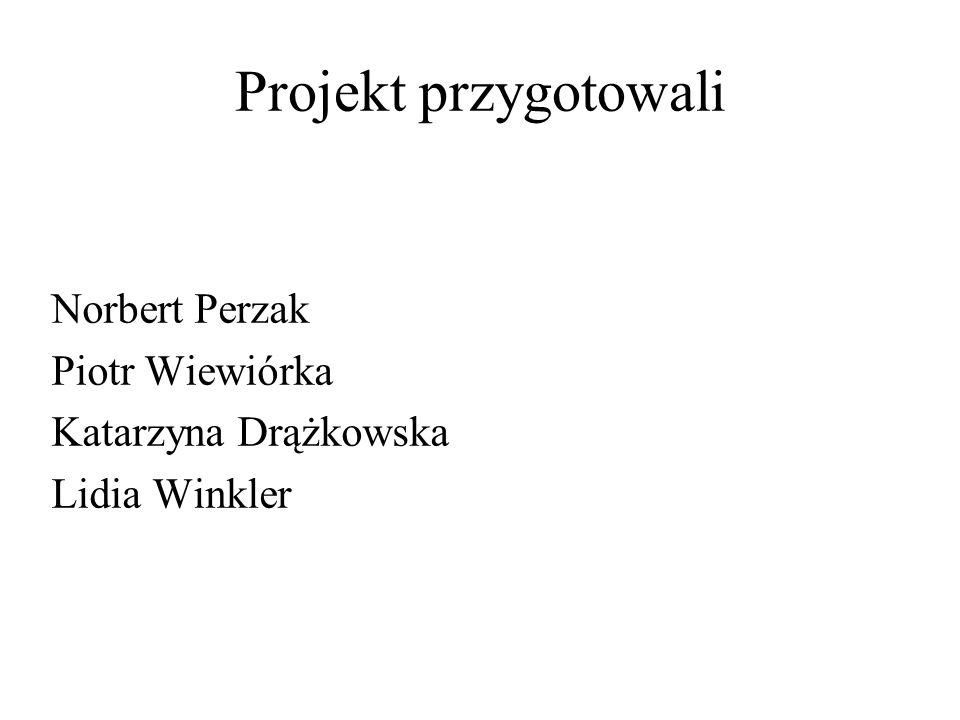 Projekt przygotowali Norbert Perzak Piotr Wiewiórka Katarzyna Drążkowska Lidia Winkler