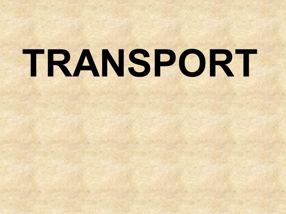 Większa część historii transportu drogowego wiąże się z jego pierwotną formą czyli pieszymi wędrówkami.