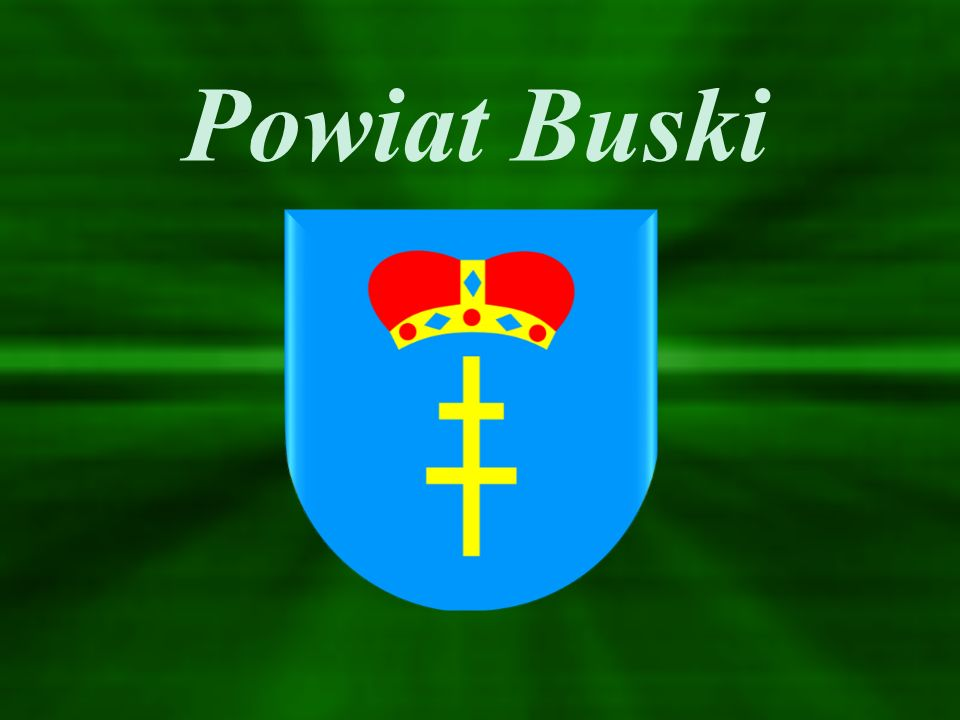 W Powiecie Buskim zasadnicze szkoły zawodowe oferują kształcenie w zawodach: Zasadnicza Szkoła Zawodowa Nr 1 w Zespole Szkół Ponadgimnazjalnych Nr 1 im.