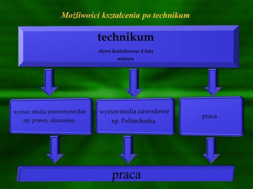 W Powiecie Buskim licea ogólnokształcące oferują kształcenie w oddziałach z przedmiotami rozszerzonymi: IV Liceum Ogólnokształcące w Zespole Szkół Techniczno – Informatycznych Al.