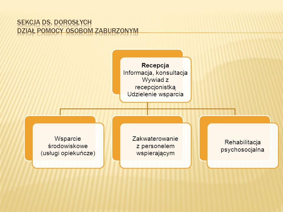 Recepcja Informacja, konsultacja Wywiad z recepcjonistką Udzielenie wsparcia Wsparcie środowiskowe (usługi opiekuńcze) Zakwaterowanie z personelem wspierającym Rehabilitacja psychosocjalna