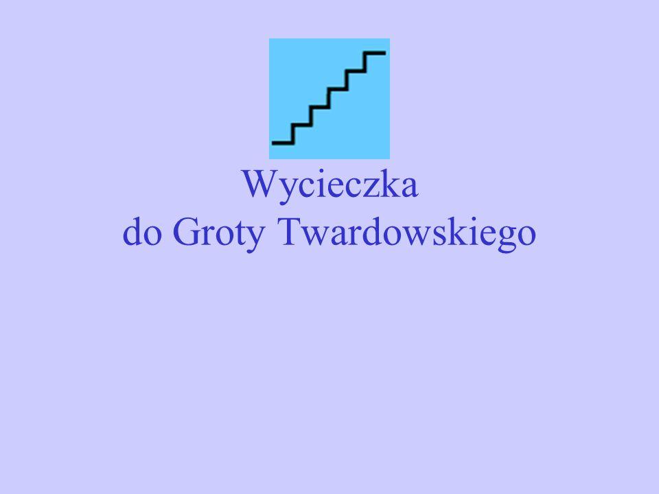 Wycieczka do Groty Twardowskiego